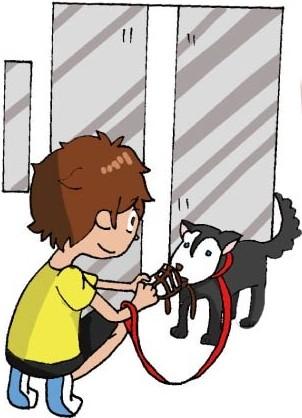 乘坐电梯一般礼节与携带宠物注意事项