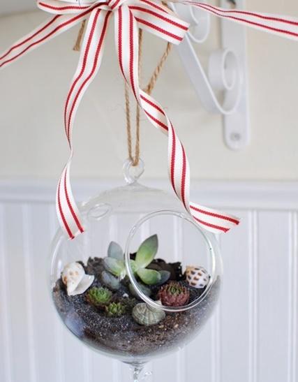 Hanging-Globe-Terrarium.jpg