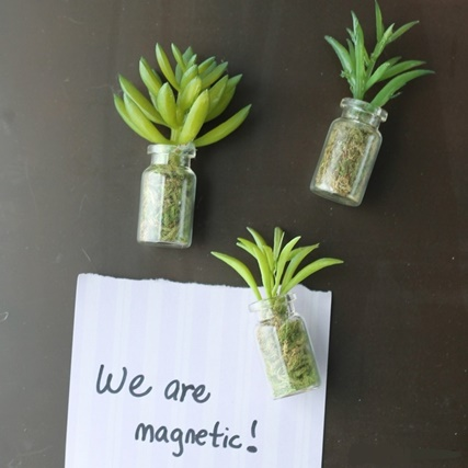 06-succulent-mason-jar-magnets-Country-Chic-Cottage.jpg