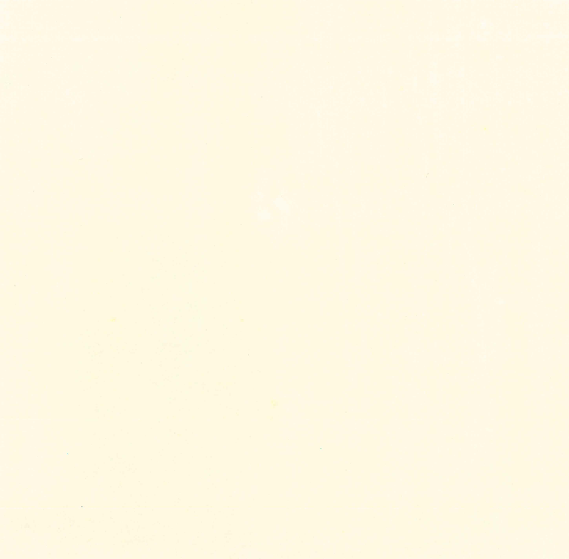 大理石-南斯拉夫白.png