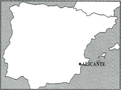 花崗石-西班牙芭拉中花S.PNG