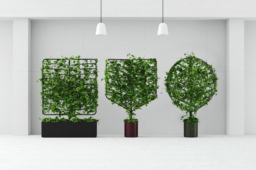 helen-kontouris-botanical-planter-screens-designboom-00.jpg