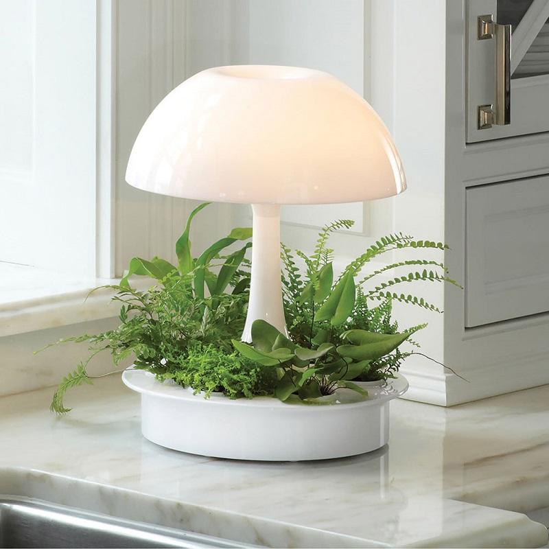 ambienta-living-table-lamp-1.jpg