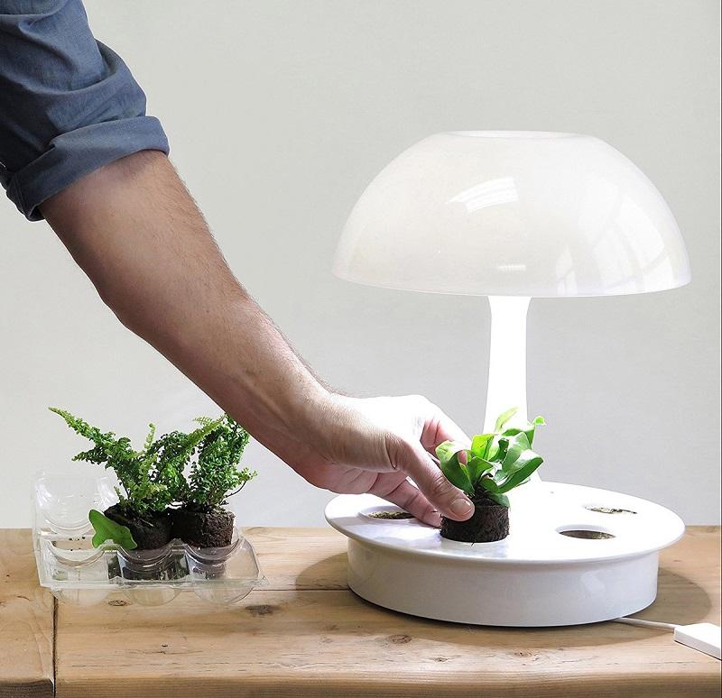 ambienta-living-table-lamp-4.jpg