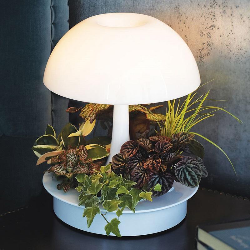 ambienta-living-table-lamp-8.jpg