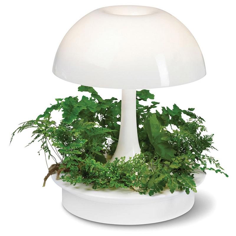ambienta-living-table-lamp-9.jpg