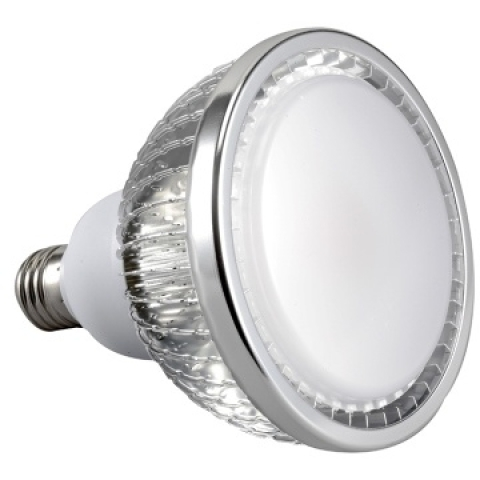 30W Dimmable PAR38 LED Lamp (Nichia )